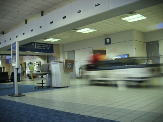 immigration inspection at airport